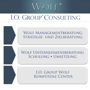 IOGW Consulting, Realisierung, Training, Controlling