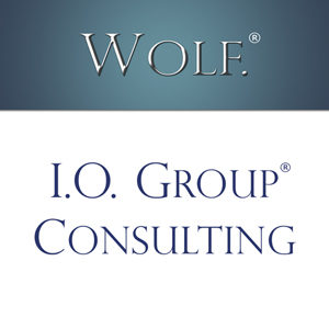 Wolf I.O. Group Consulting