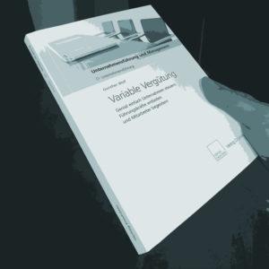 Vergütung Consulting Anreizsysteme Anreize Konzeption, Einführung, Realisation, Vergütungs-Controlling